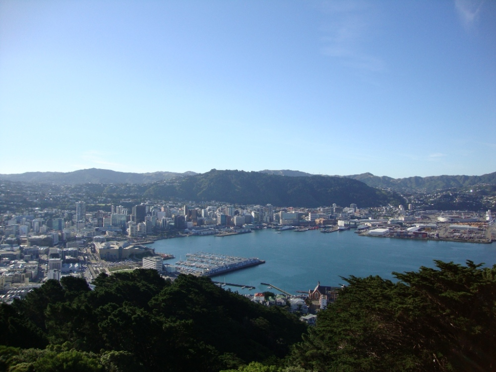 wellington-from-mount-vic-lookout-1